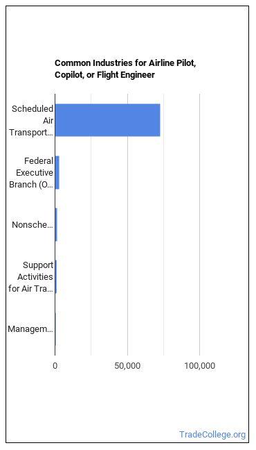 Airline Pilot, Copilot, or Flight Engineer Industries