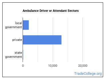 Ambulance Driver or Attendant Sectors