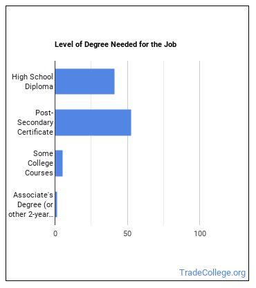 Automotive Master Mechanic Degree Level