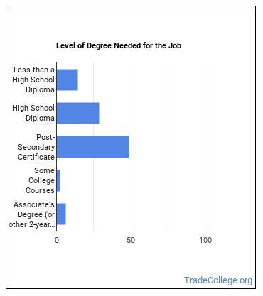 Automotive Specialty Technician Degree Level