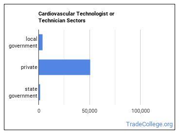 Cardiovascular Technologist or Technician Sectors