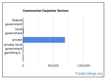 Construction Carpenter Sectors