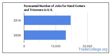 Forecasted Number of Jobs for Hand Cutters and Trimmers in U.S.