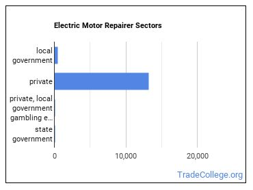 Electric Motor Repairer Sectors