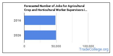 Forecasted Number of Jobs for Agricultural Crop and Horticultural Worker Supervisors in U.S.