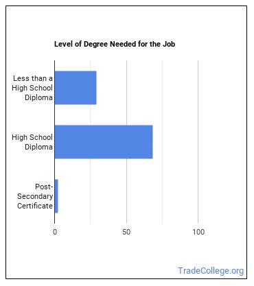 Insulation Worker Degree Level