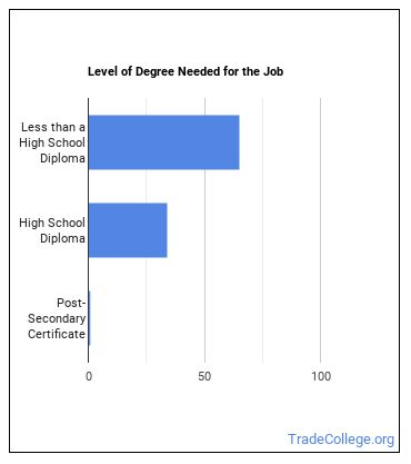 Laundry and Dry-Cleaning Worker Degree Level