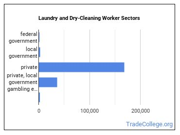 Laundry and Dry-Cleaning Worker Sectors