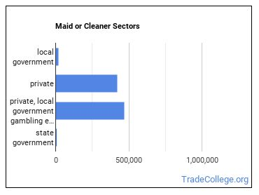 Maid or Cleaner Sectors