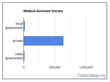 Medical Assistant Sectors