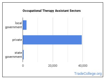 Occupational Therapy Assistant Sectors