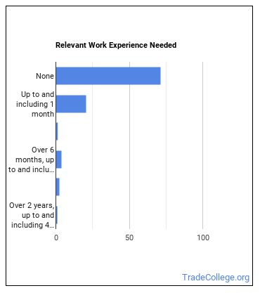 Parking Enforcement Worker Work Experience
