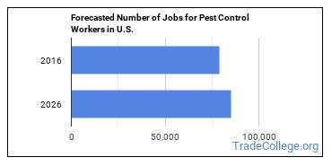 Forecasted Number of Jobs for Pest Control Workers in U.S.