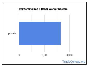 Reinforcing Iron & Rebar Worker Sectors