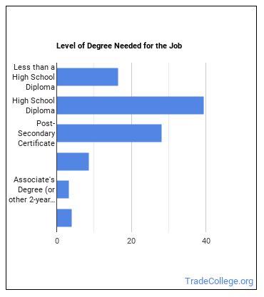 Rough Carpenter Degree Level