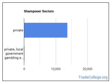 Shampooer Sectors