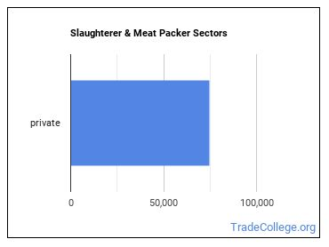 Slaughterer & Meat Packer Sectors