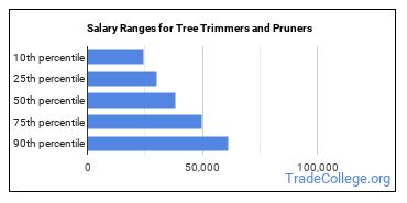 Salary Ranges for Tree Trimmers and Pruners