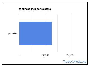 Wellhead Pumper Sectors