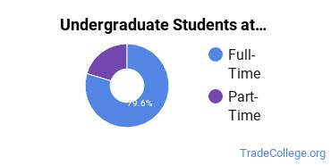 Full-Time vs. Part-Time Undergraduate Students at  Sentara College of Health Sciences