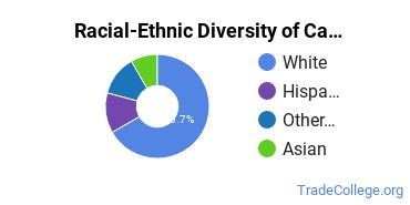 Racial-Ethnic Diversity of Cardiovascular Technology/Technologist Majors at Sentara College of Health Sciences