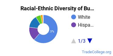 Racial-Ethnic Diversity of Building Construction Technology Students with Associate's Degrees