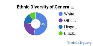 General Construction Trades Majors in MI Ethnic Diversity Statistics