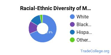 Racial-Ethnic Diversity of Masonry Students with Associate's Degrees