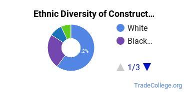 Construction Trades Majors in VA Ethnic Diversity Statistics
