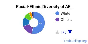Racial-Ethnic Diversity of AE Tech Students with Associate's Degrees