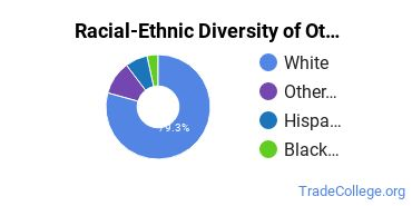 Racial-Ethnic Diversity of Other Engineering-Related Fields Students with Associate's Degrees