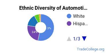 Automotive Engineering Technology Majors in FL Ethnic Diversity Statistics