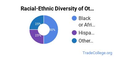 Racial-Ethnic Diversity of Other Mining & Petroleum Tech Students with Associate's Degrees