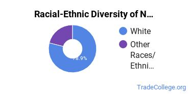 Racial-Ethnic Diversity of Nanotech Students with Associate's Degrees