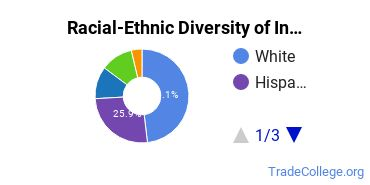 Racial-Ethnic Diversity of Industrial Safety Tech Students with Associate's Degrees