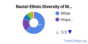 Racial-Ethnic Diversity of Medical Radiologic Technology/Science - Radiation Therapist Students with Associate's Degrees