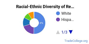 Racial-Ethnic Diversity of Respiratory Care Therapy/Therapist Students with Associate's Degrees