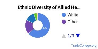 Allied Health Professions Majors in RI Ethnic Diversity Statistics
