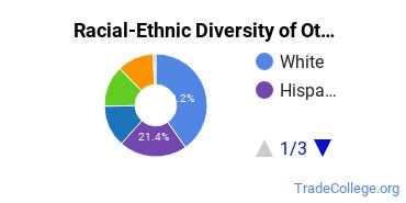 Racial-Ethnic Diversity of Other Allied Health and Medical Assisting Services Students with Associate's Degrees