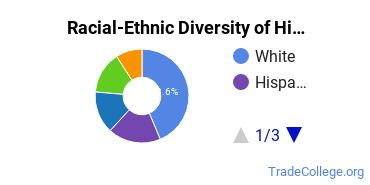 Racial-Ethnic Diversity of Histologic Technology/Histotechnologist Students with Associate's Degrees