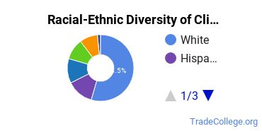 Racial-Ethnic Diversity of Clinical Laboratory Technician Students with Associate's Degrees