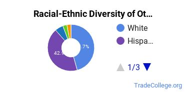 Racial-Ethnic Diversity of Other Dental Services & Allied Professions Students with Associate's Degrees