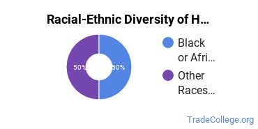 Racial-Ethnic Diversity of Home Health Aide Students with Associate's Degrees