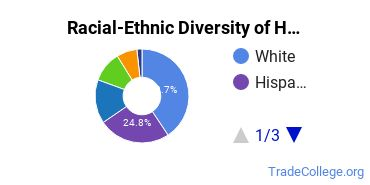 Racial-Ethnic Diversity of Health Studies Students with Associate's Degrees