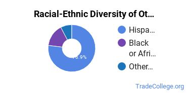 Racial-Ethnic Diversity of Other Practical Nursing, Vocational Nursing and Nursing Assistants Students with Associate's Degrees