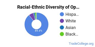 Racial-Ethnic Diversity of Optometric Technician/Assistant Students with Associate's Degrees