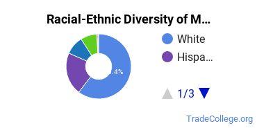 Racial-Ethnic Diversity of Mechanic & Repair Technologies Associate's Degree Students