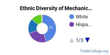 Mechanic & Repair Technologies Majors in NY Ethnic Diversity Statistics