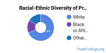 Racial-Ethnic Diversity of Precision Systems Maintenance and Repair Technologies, Other Students with Associate's Degrees