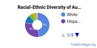Racial-Ethnic Diversity of Automobile/Automotive Mechanics Technology/Technician Students with Associate's Degrees